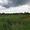 п. Южный -1, Багратионовский район, 9 соток, в собствен., свет, газ, 12км до г.  - Изображение #4, Объявление #1658071