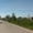 пос. Кузнецкое, Зеленоградский район, 12 сот, ИЖД, свет, 8км до Калининграда - Изображение #4, Объявление #1700125