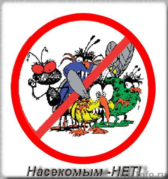 Насекомых уничтожение, клещи, комары, клопы, Объявление #886251