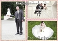 Фотограф на свадьбу,  торжество