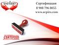 Купить сертификат РПО для Калининграда