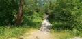 пос. Малиновка, Зеленоградский район, 16 и 24 сотки, до моря 80 м - Изображение #9, Объявление #1677157